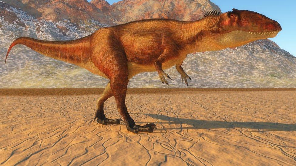 El Lugar En El Que Convivieron 3 De Los Dinosaurios Carnivoros Tele 13 El dinosaurio de cuello largo. t13