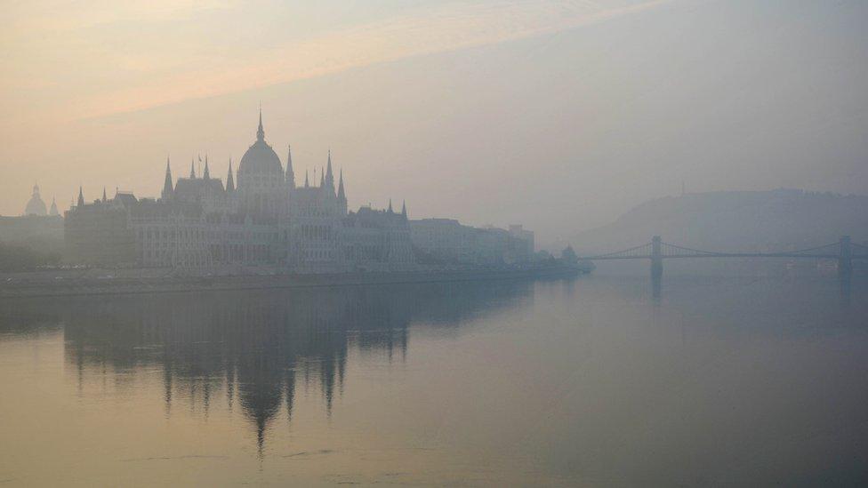 Dunav, Dunav u Budimpešti