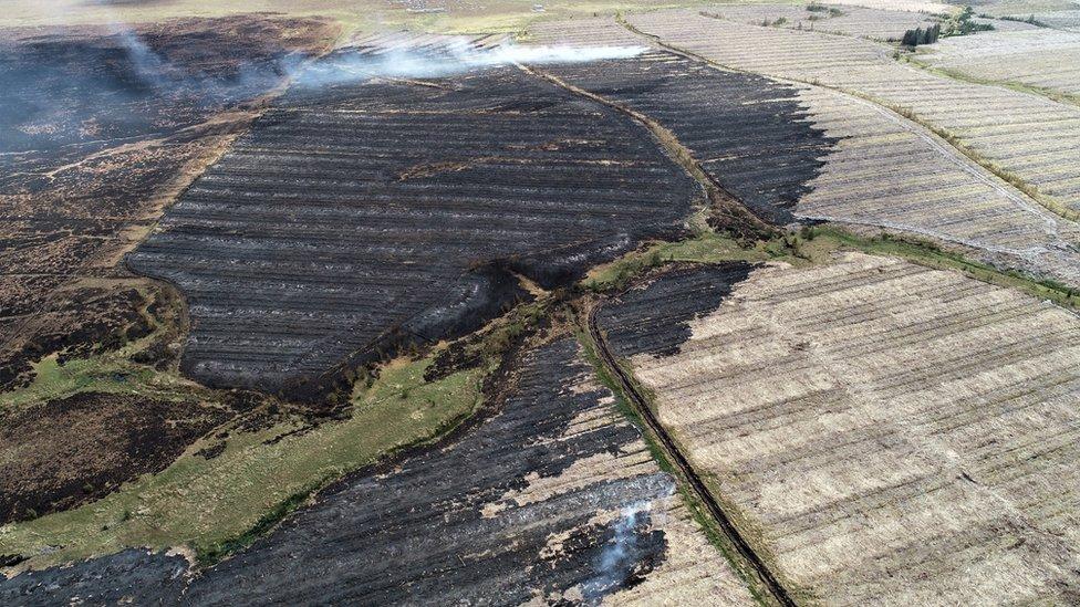 Fire_Behind_Flux_Tower_2019_Aerial Credit Paul Turner.jpg