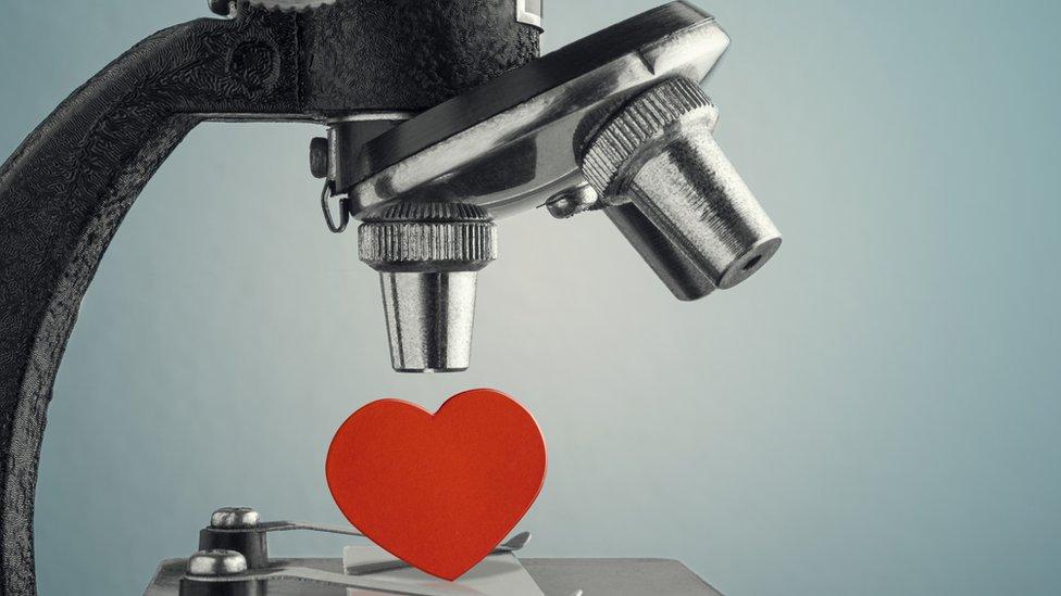 mikroskop ve kalp