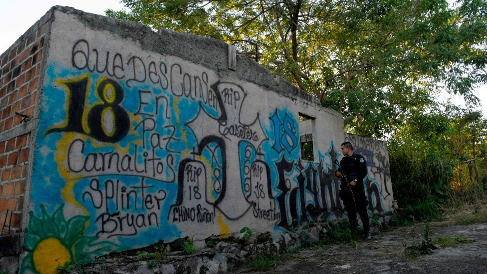 Pintadas de pandillas en barrio de El Salvador NO USAR | BBC