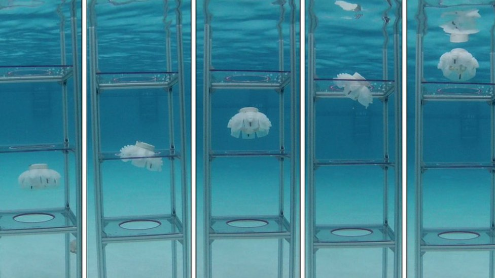 Jellyfish robots in glass tubes