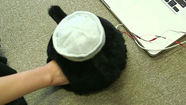 Device allowing a long distance scratch from your cat