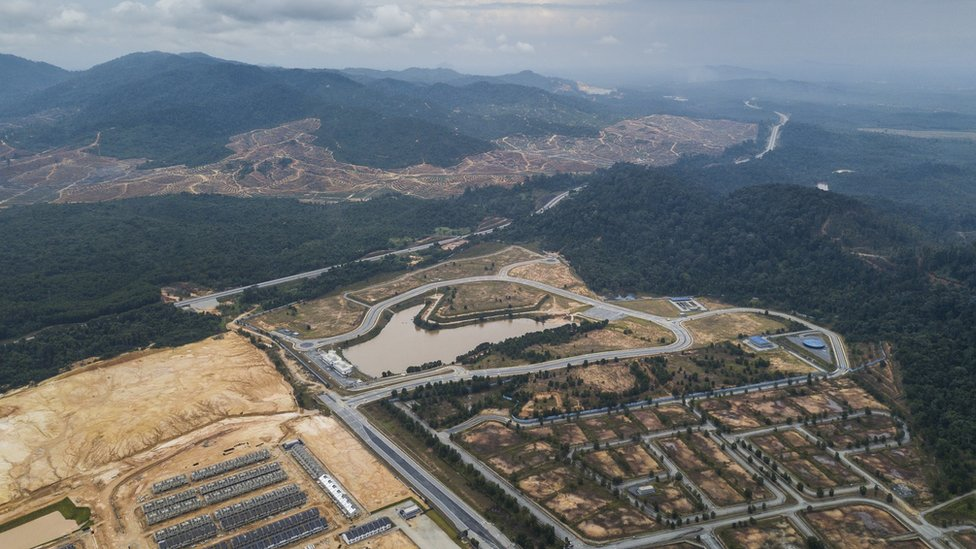 Drone shot of Kelantan forest