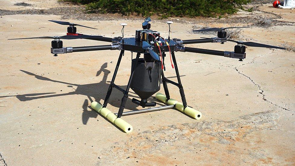 Konzervacija ostrva uspešno je koristila dronove na Galapagosu da bi se izborila s agresivnim pacovima