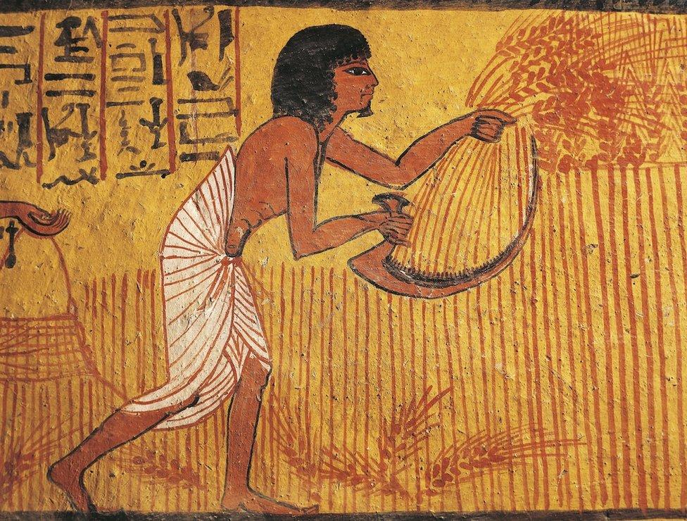 Mural de un cultivador en la tumba de Sennedjem, un artesano que vivió en antiguo Egipto