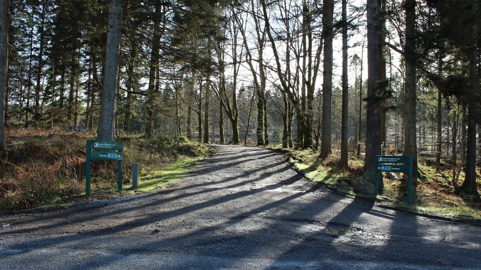 Galloway Forest Park