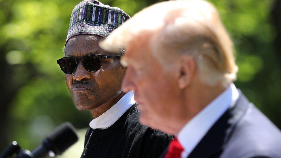 Nigerian President Muhammadu Buhari and US President Donald Trump outside the White House