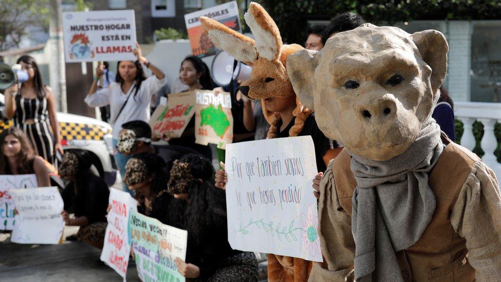 متظاهرون ضد استخدام الوقود الأحفوري