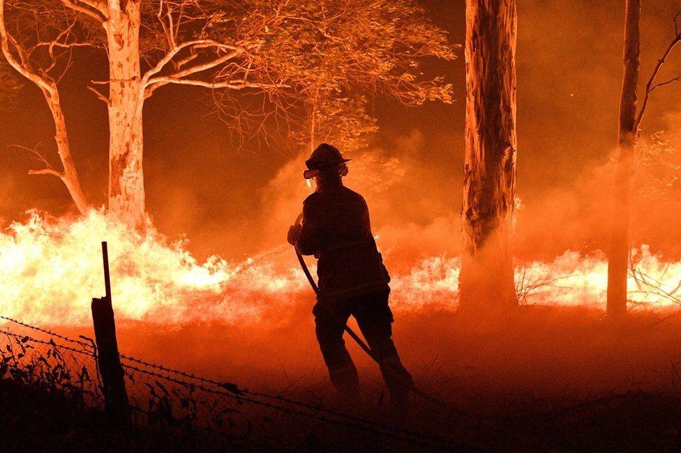 新南威爾士消防員