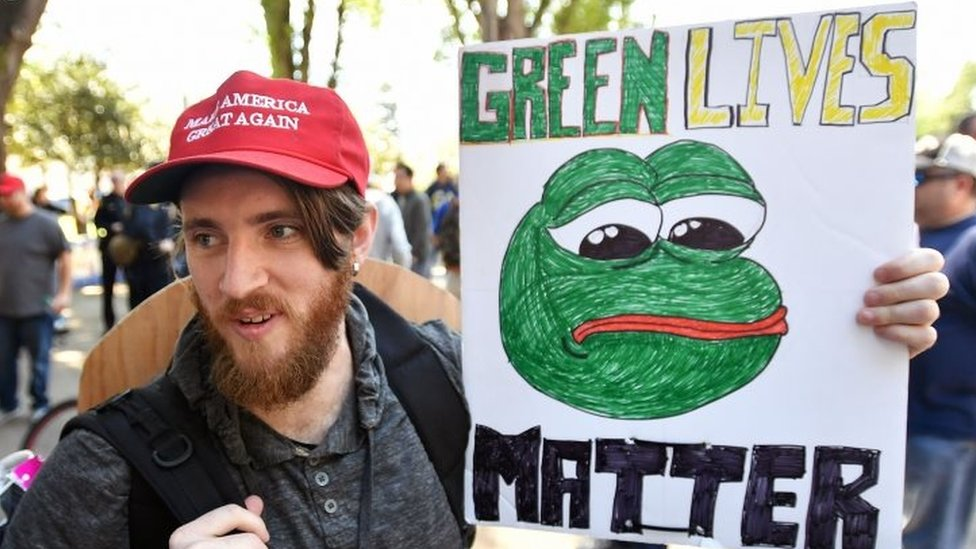 A protester holds a Pepe the frog sign during a rally in Berkeley, California (24 April 2017)