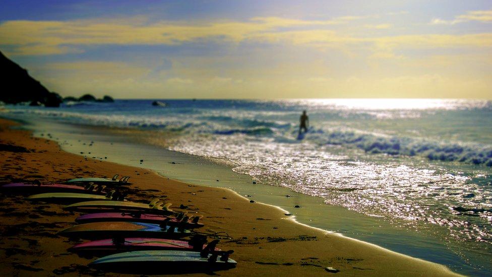 Tablas en playa brasileña