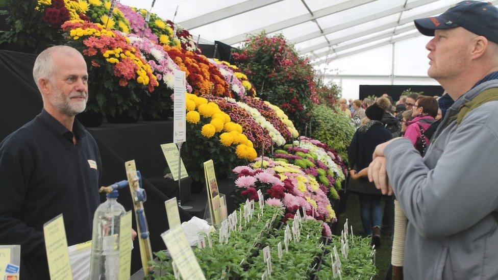 Mae yna stondinau niferus yn y sioe a chyfle i gael cyngor gyda'r garddio // There's numerous stalls at the show and time to share gardening tips