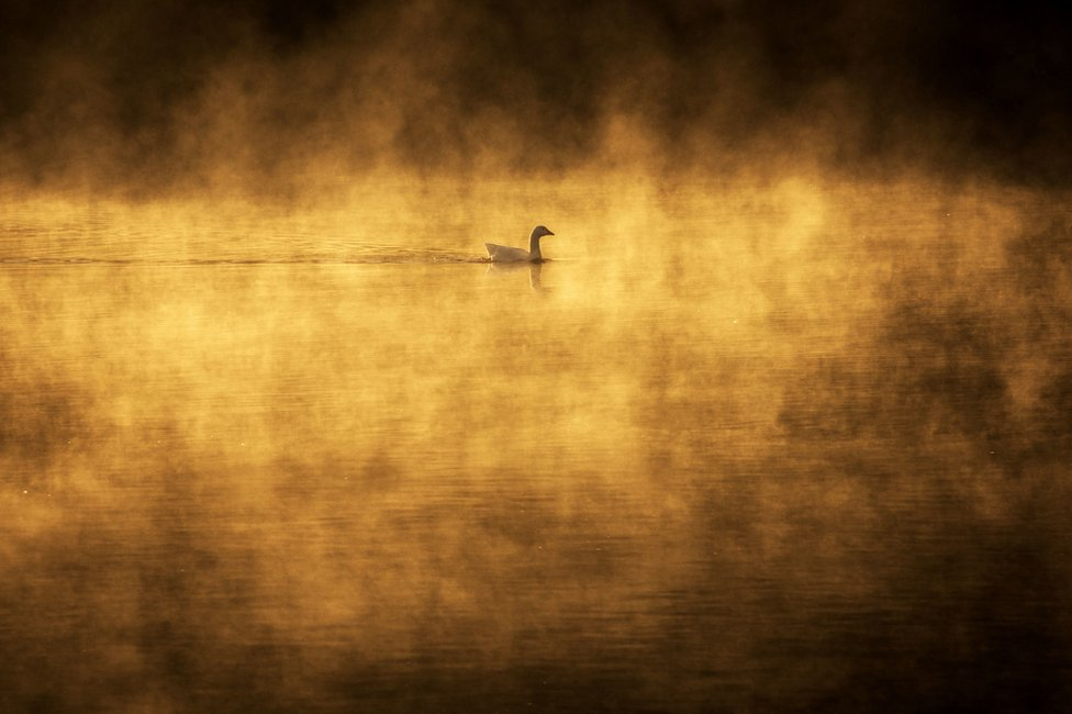 Dawn over the River Trent at Gunthorpe, Nottingham