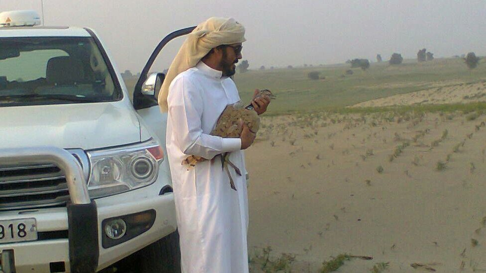A sheikh at a hunt at the Khushab district area