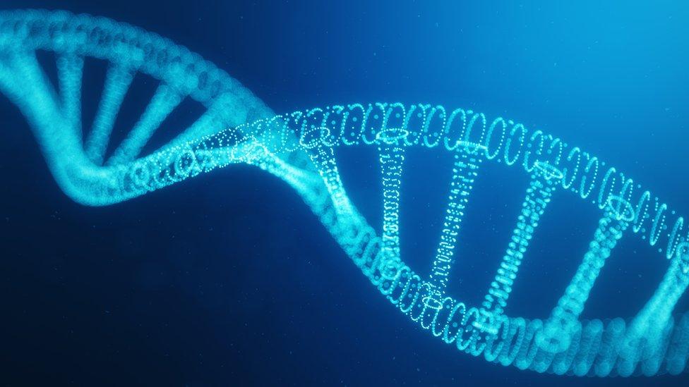 Muestra de ADN.