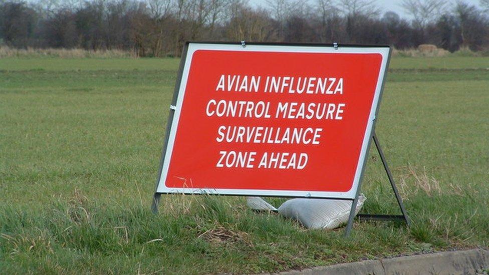 bird flu temporary control zone sign