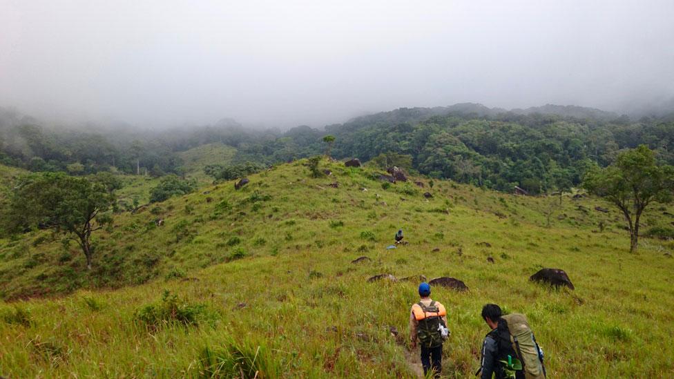 Montañas en el sur de Vietnam donde fue localizado el ciervo ratón