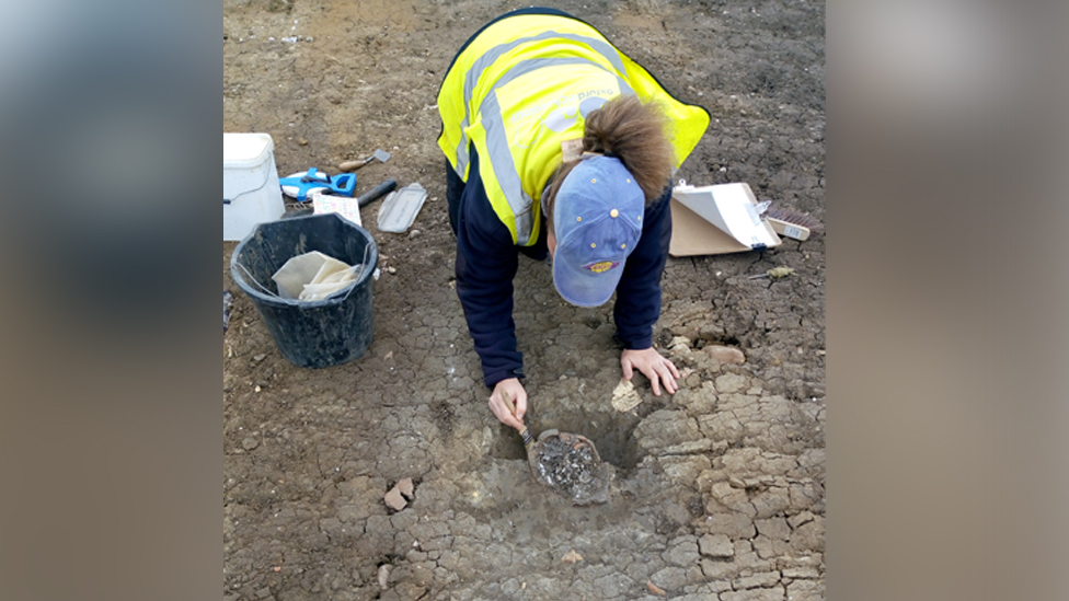 Archaeologist uncovering top of human skull