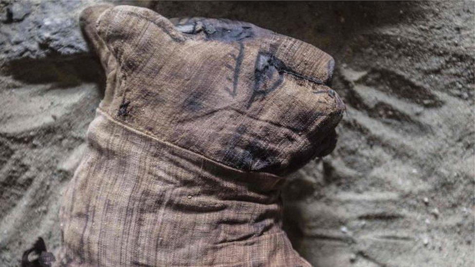 在開羅附近的烏瑟卡夫王(King Userkaf)的金字塔旁,挖出一批罕見的聖甲蟲木乃伊、數十具貓木乃伊