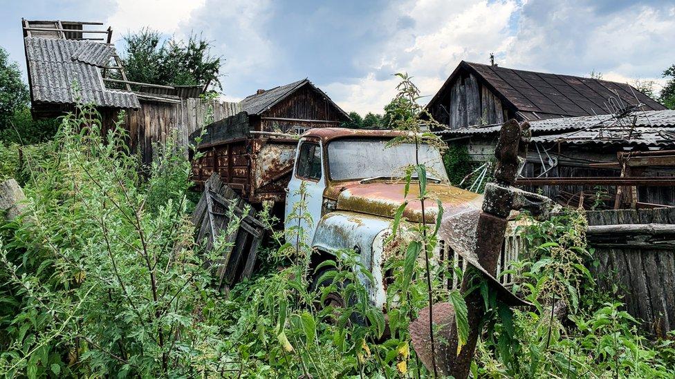 Zona abandonada en Chernóbil tomada por la vegetación.