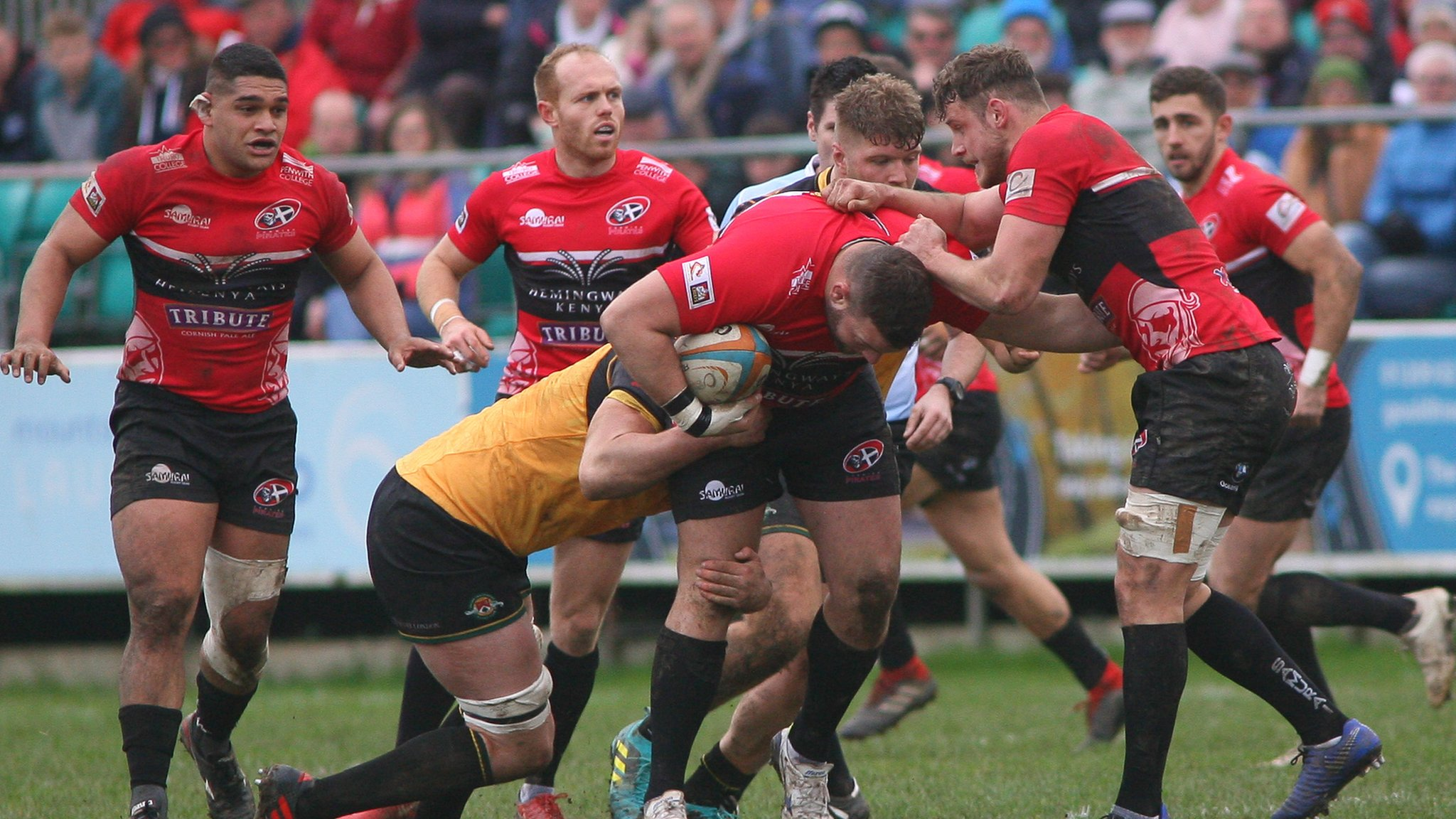 Gavin Cattle: Cornish Pirates will not repeat Ealing performance in cup