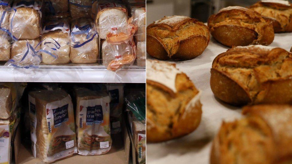 هل تشعر بفارق باختلاف نوع الخبز الذي تأكله؟