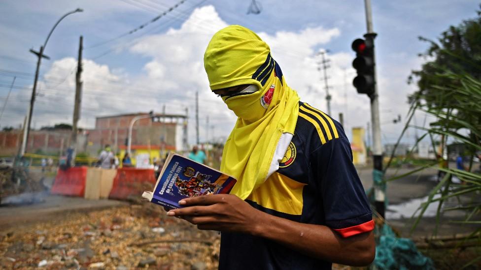 Manifestante lee la Constitucion