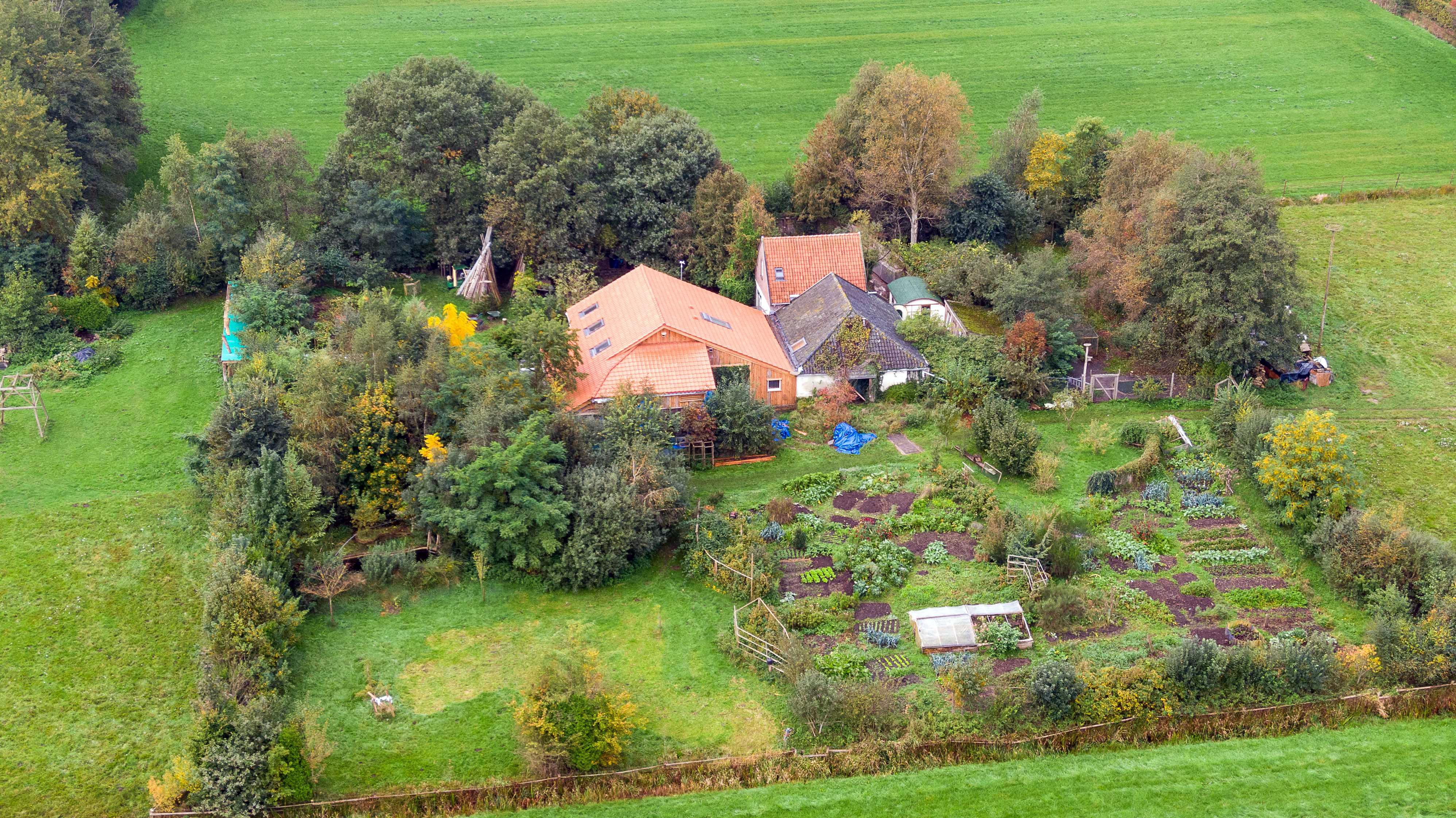 Los vecinos creen que la familia vivía de los alimentos cultivados en la granja.
