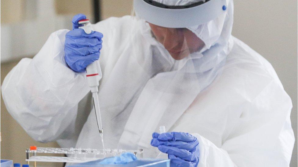 普京宣布在俄罗斯的第一个冠状病毒疫苗的注册