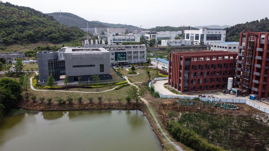 處於輿論漩渦中的武漢病毒研究所坐落在武漢市東部一個並不偏僻的地方