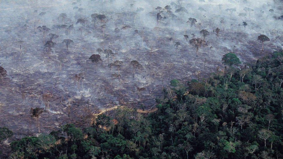Aerial view of Amazon rainforest burning in 2017