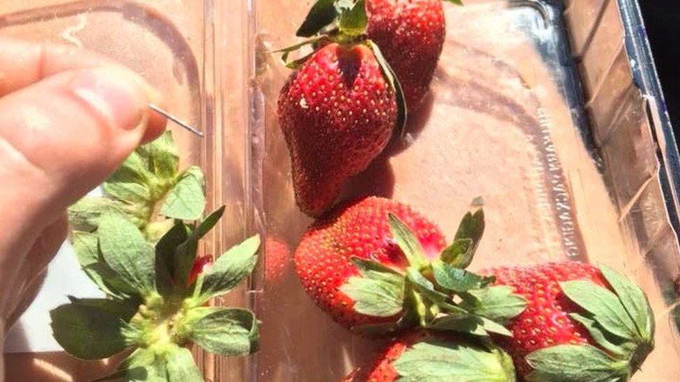 Australia ofrece recompensa por fresas contaminadas con agujas