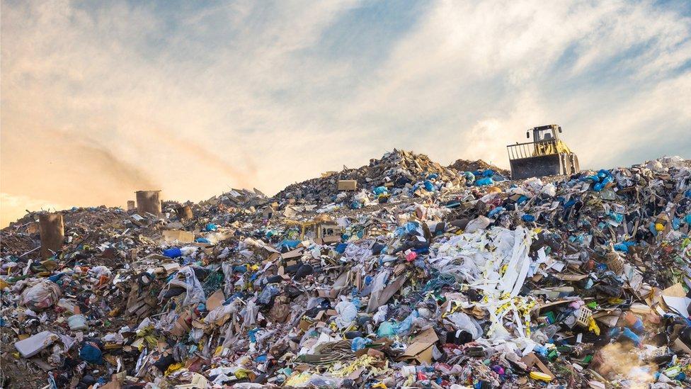 أصبح التلوث البلاستيكي مشكلة بيئية كبيرة