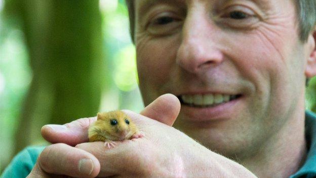 Ian White holding dormouse
