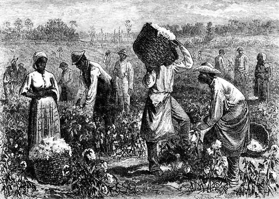 Este dibujo es de una plantación de algodón en Estados Unidos, en 1875.
