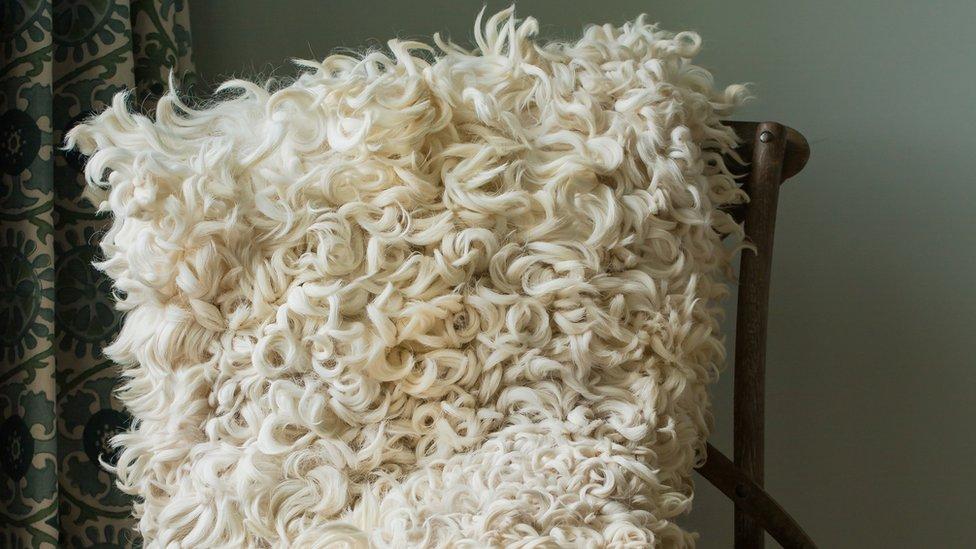 A sheepskin throw