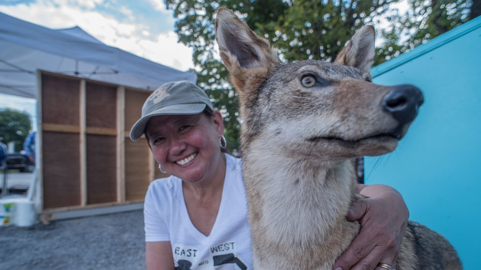 Lady with stuffed coyote.
