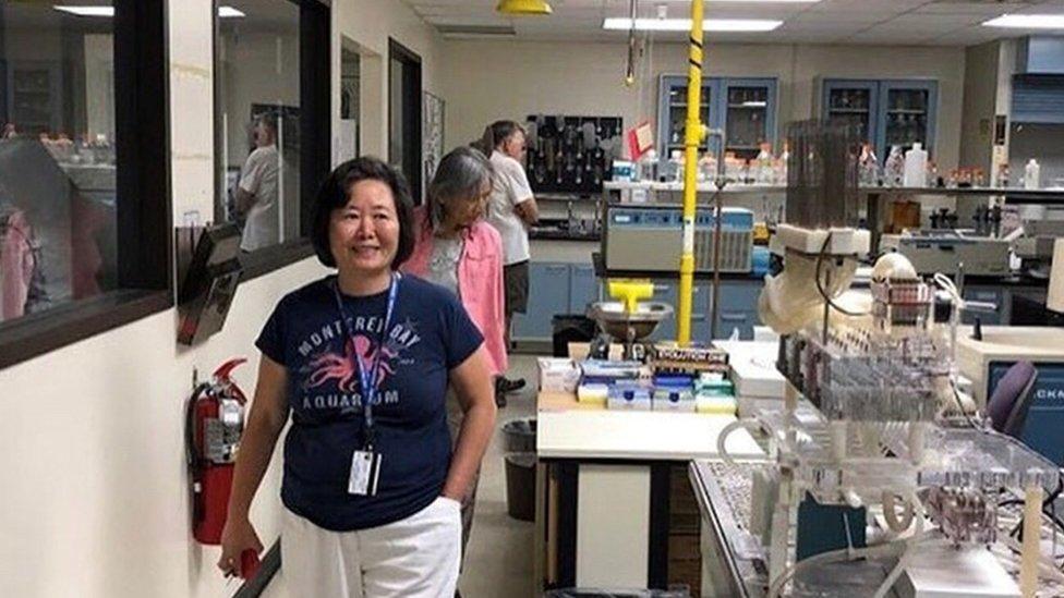Dr Wang at work