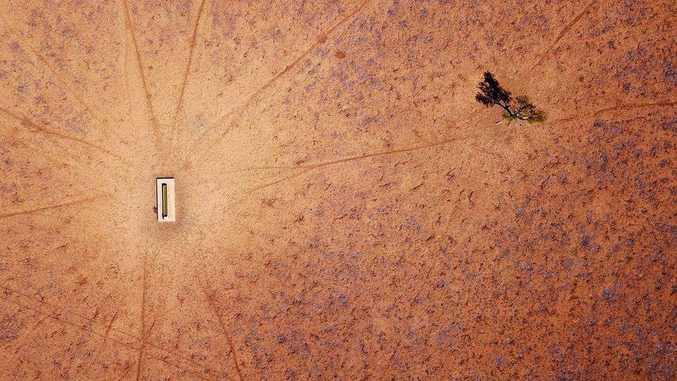 Un árbol solitario es el único signo de vida cerca de un abrevadero en una granja a las afueras de Walgett, Nueva Gales del Sur