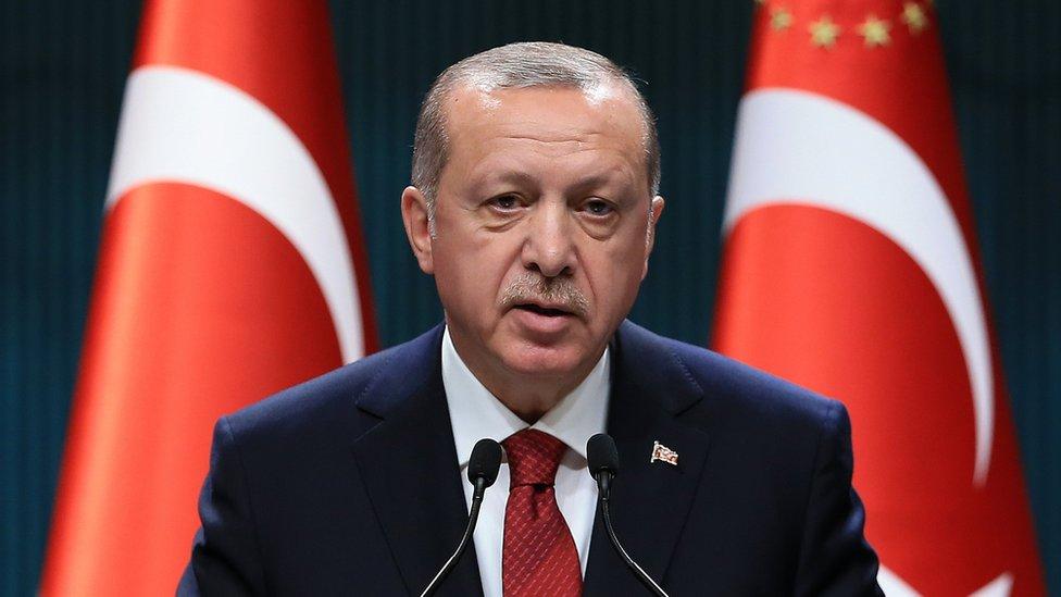 Redžep Tajip Erdogan, Turska
