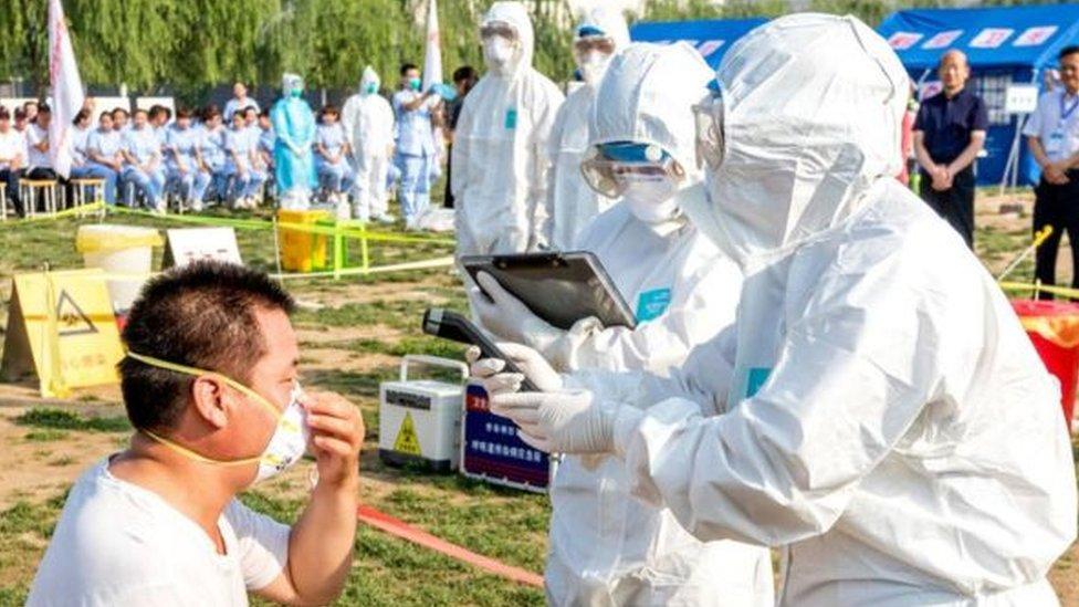 تجري الصين تجارب للوقاية من مرض أنفلوانزا الطيور