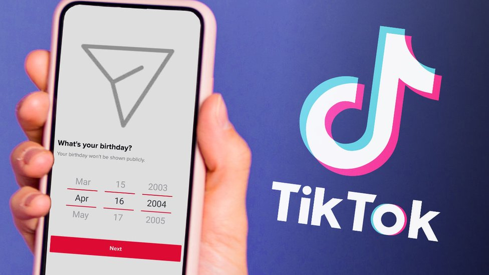 This mock-up shows the TikTok direct message symbol with a question about your birthdate