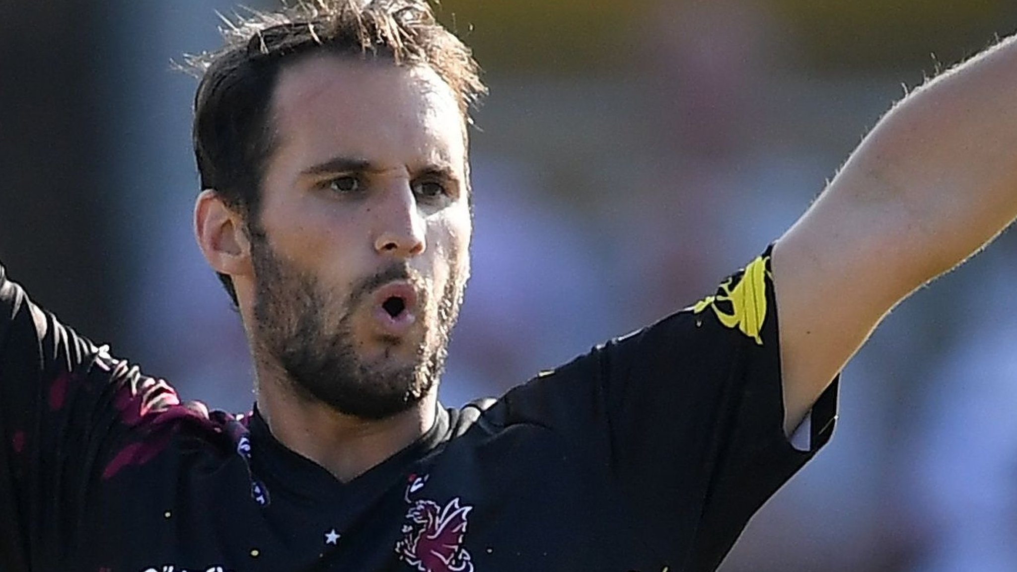 Lewis Gregory: Somerset all-rounder signs new three-year contract