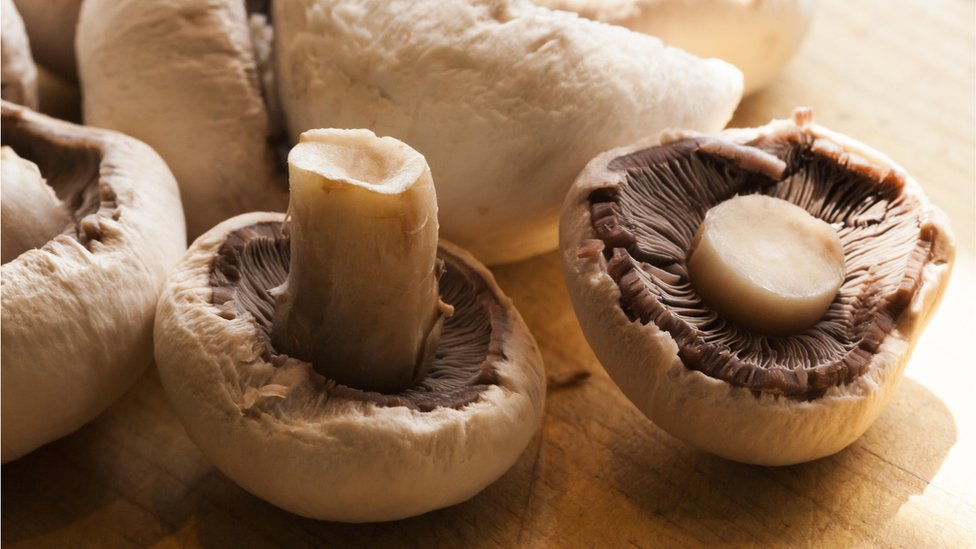 Microwave mushrooms 'to keep their goodness', scientists say