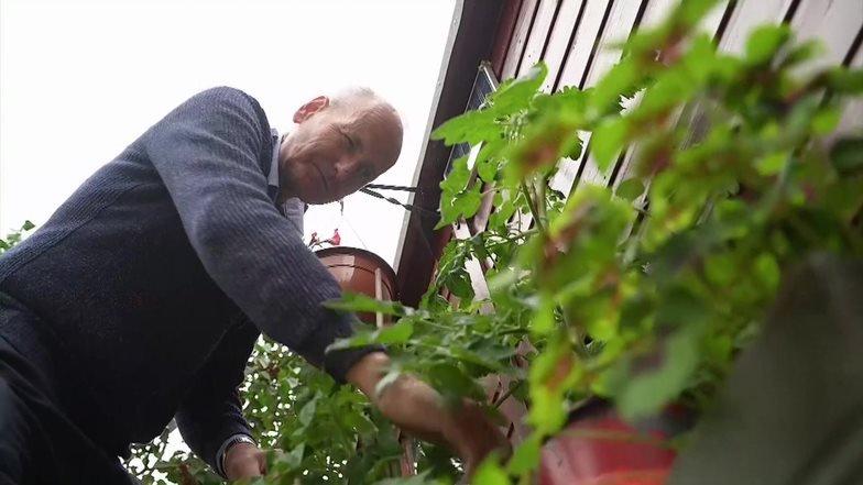 Dave Smith em seu jardim em Bristol, no Reino Unido