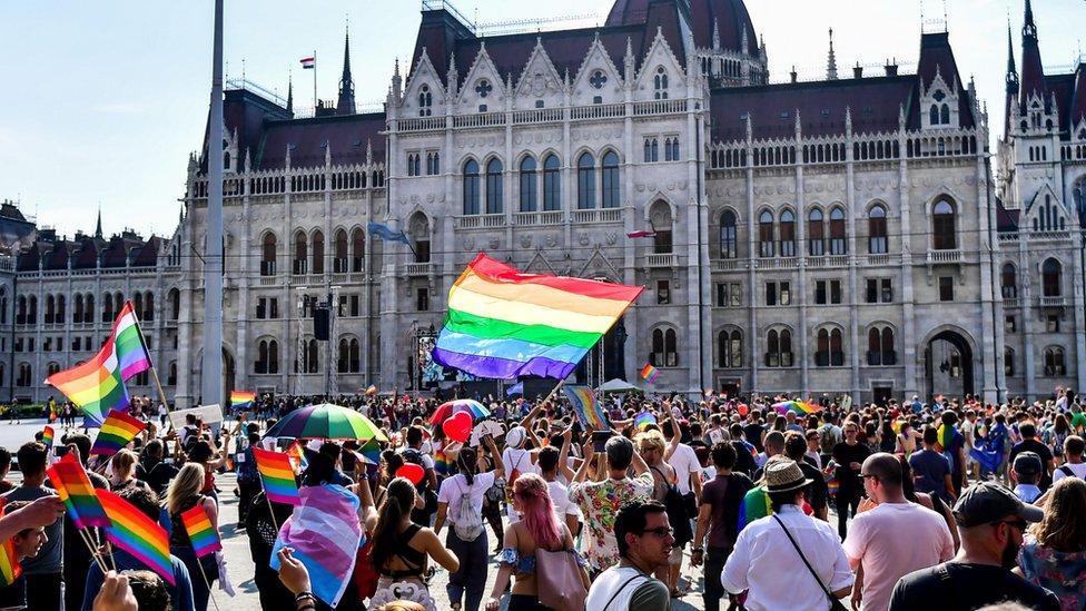 LGBT hakları grupları anayasa değişikliği önerisine karşı çıkıyor