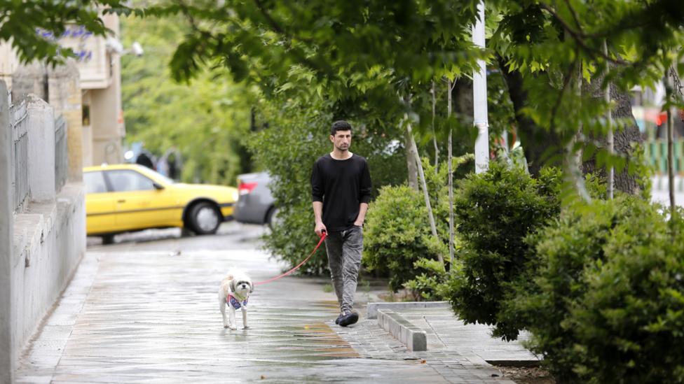 Čovek sa psom u Teheranu, maj 2018.