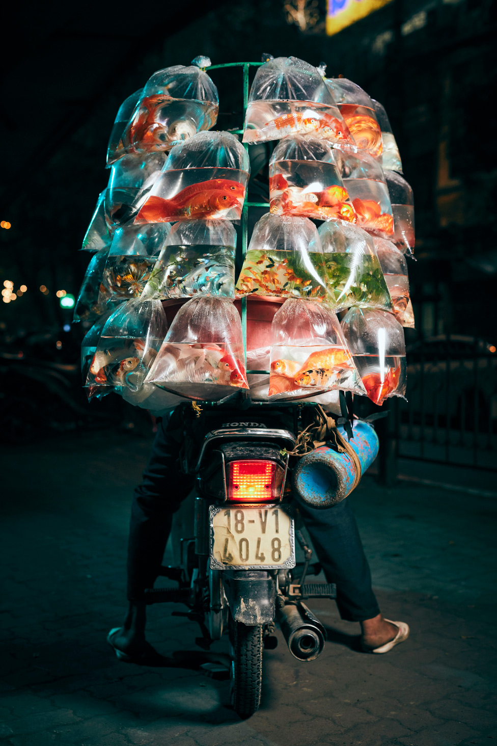 A motorcycle is mounted with a shelf- like structure, hanging bags of different types of fish