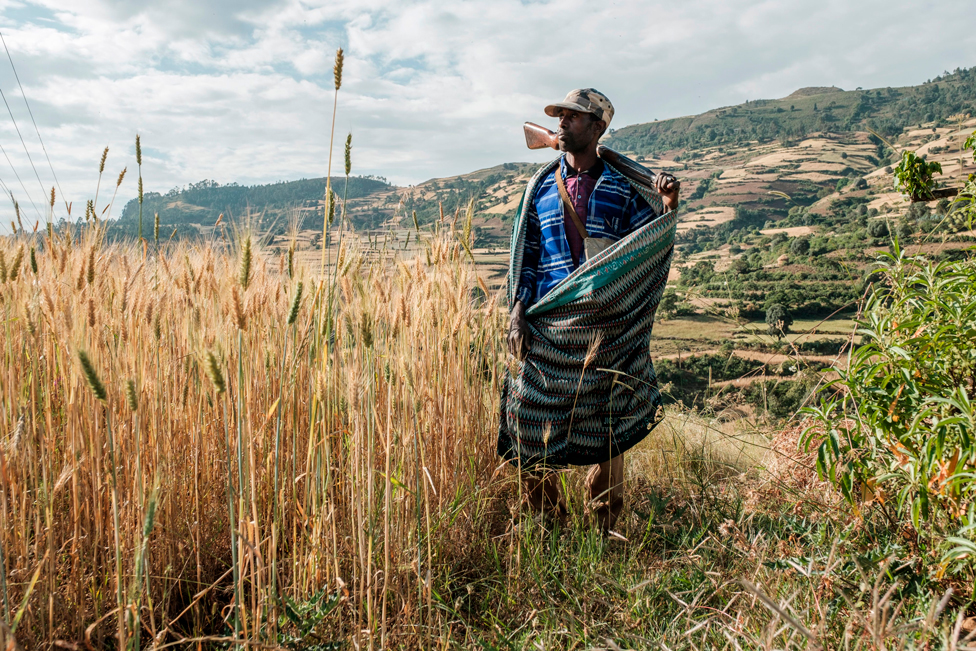 A farmer and militia fighter poses in his land near the village of Tekeldengy, northwest of Gondar, Ethiopia